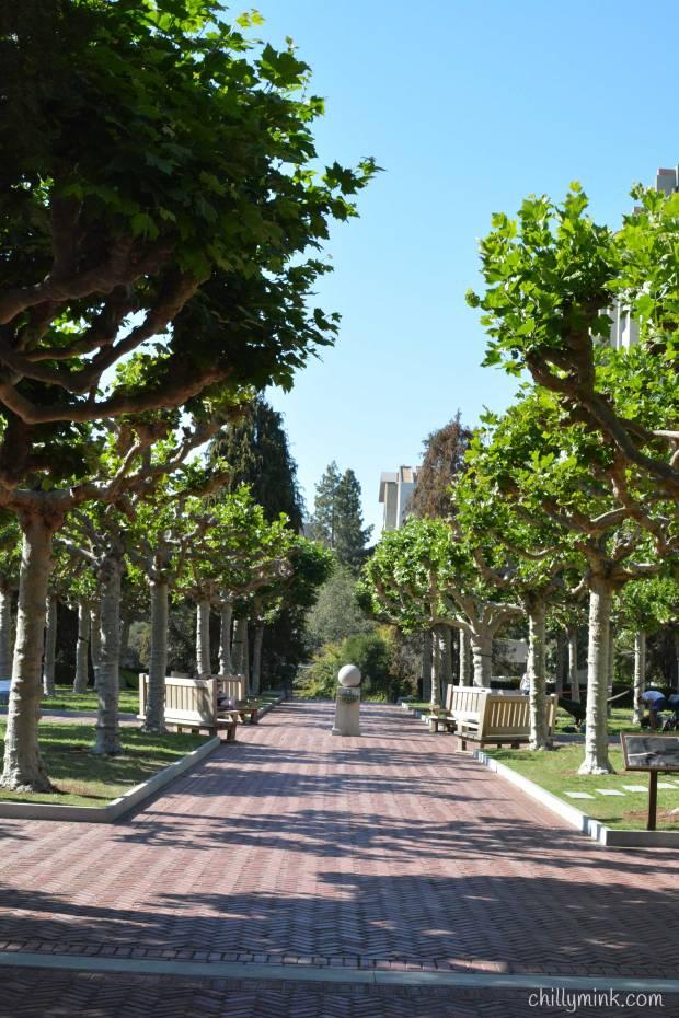 Berkeley-Benches