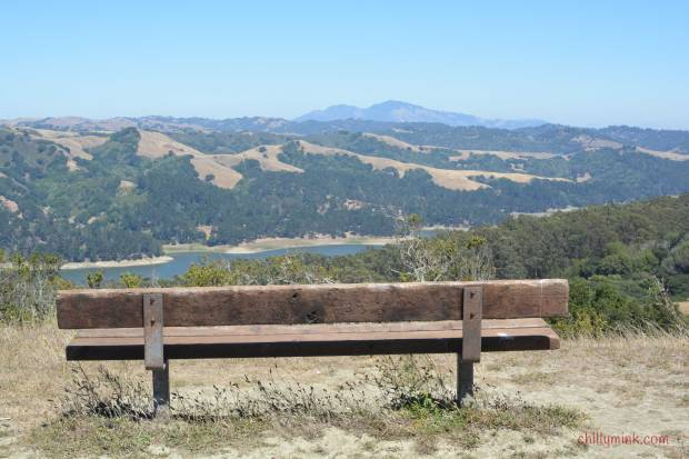 Tilden-Park-Bench
