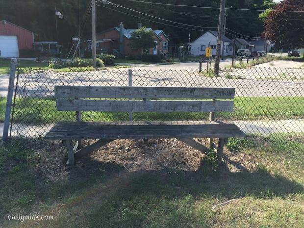 Chainlink Bench Michigan