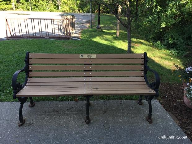 Park Bench Michigan