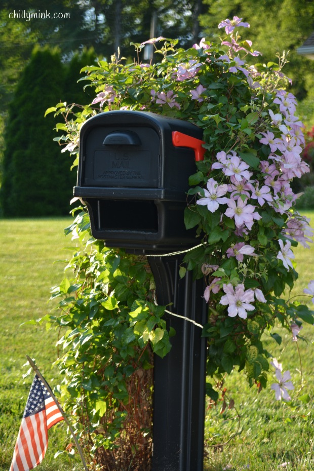 CM flower and flag mailbox