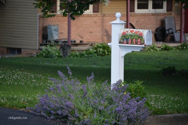 CM lavender mailbox
