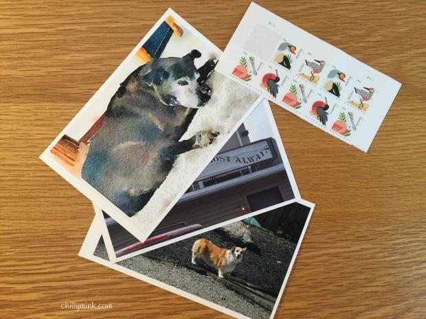 CM postcard grouping