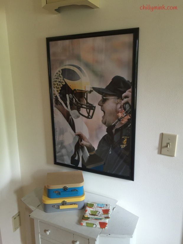 Harbaugh Poster Kindle