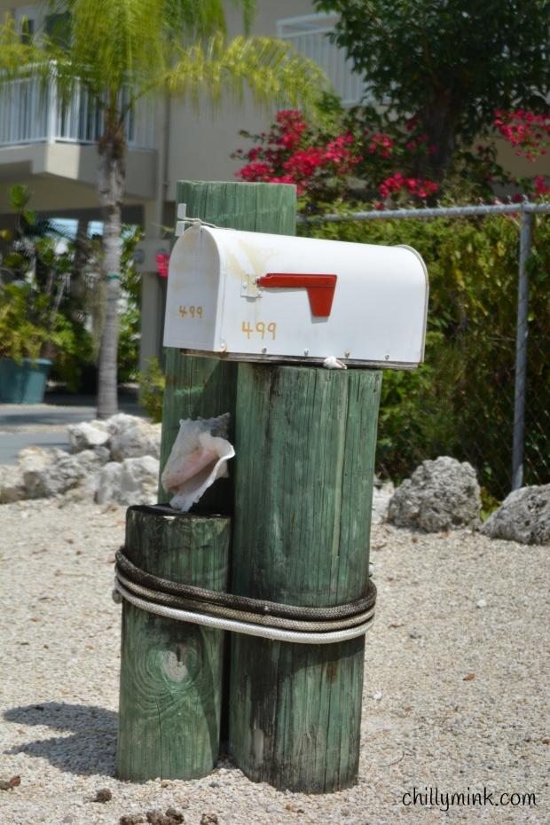 CM conch mailbox